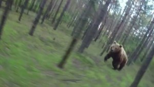 Don't Pedal Away: What To Do If A Grizzly Bear's Chasing You Down, The Dodo: A fake viral video sparks a wilderness survival lesson.